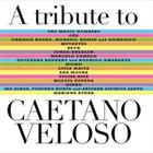 The Magic Numbers, Jorge Drexler, Beck y otros - A Tribute to Caetano Veloso